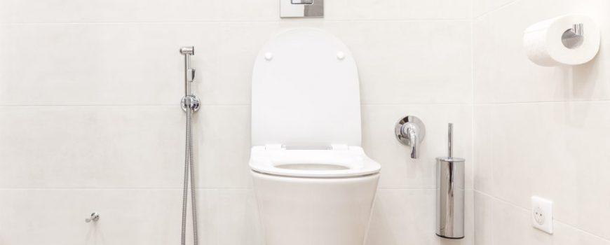 Benefícios de ter uma ducha higiênica em casa